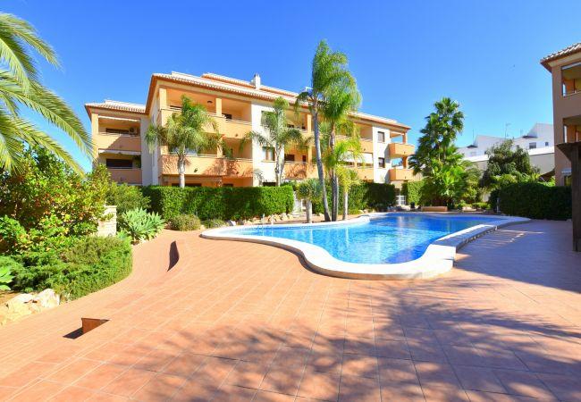 Appartement à Javea / Xàbia - Apartamento Benvinguts Javea - 5057