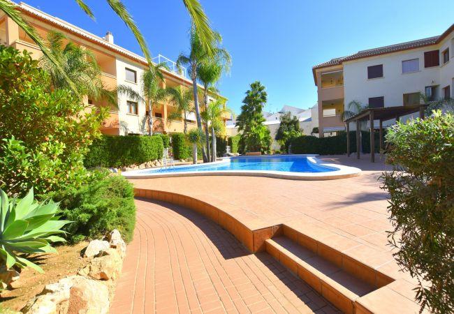 Appartement à Javea / Xàbia - Apartamento Benvinguts Javea - 5021