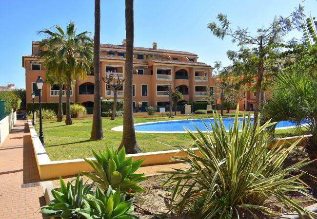 Appartement à Javea / Xàbia - Apartamento Jardines del Puerto Javea - 5050